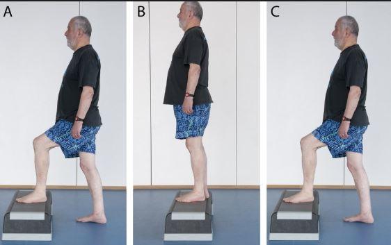 ejercicios fáciles para adultos mayores